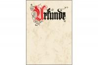 SIGEL Urkundenpapier  A4, DP548, 185g 12 Blatt