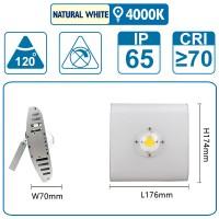 Flutlicht mit einer COB-LED, 50 Watt, silber